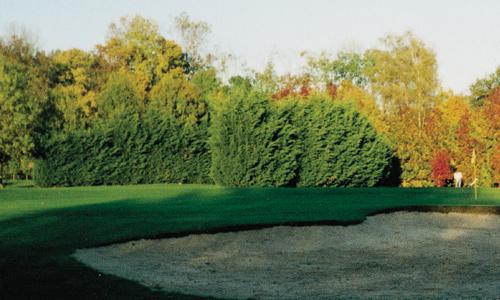 bois le roi golf du 77 de lannuaire de lile de france ~ Golf Bois Le Roi